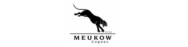 Logo với hình ảnh con báo đốm châu phi vô cùng ấn tượng và mạnh mẽ