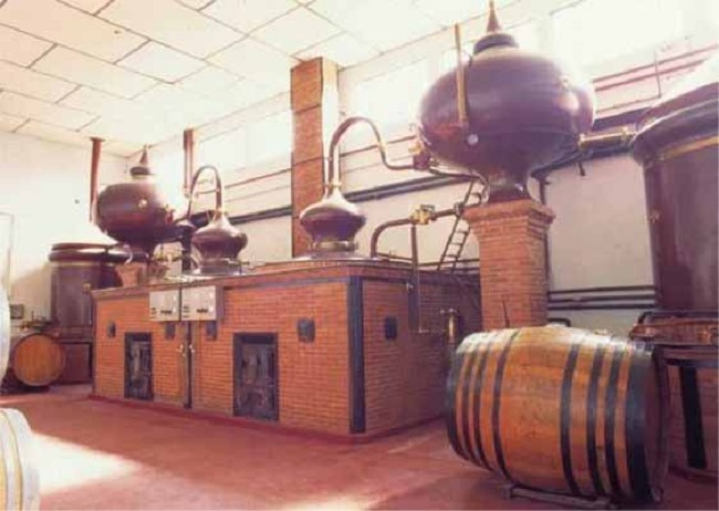 Mô hình chưng cất và ủ rượu Cognac