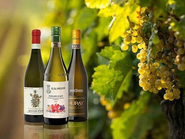 Một số dòng của rượu vang Moscato D'asti của Ý