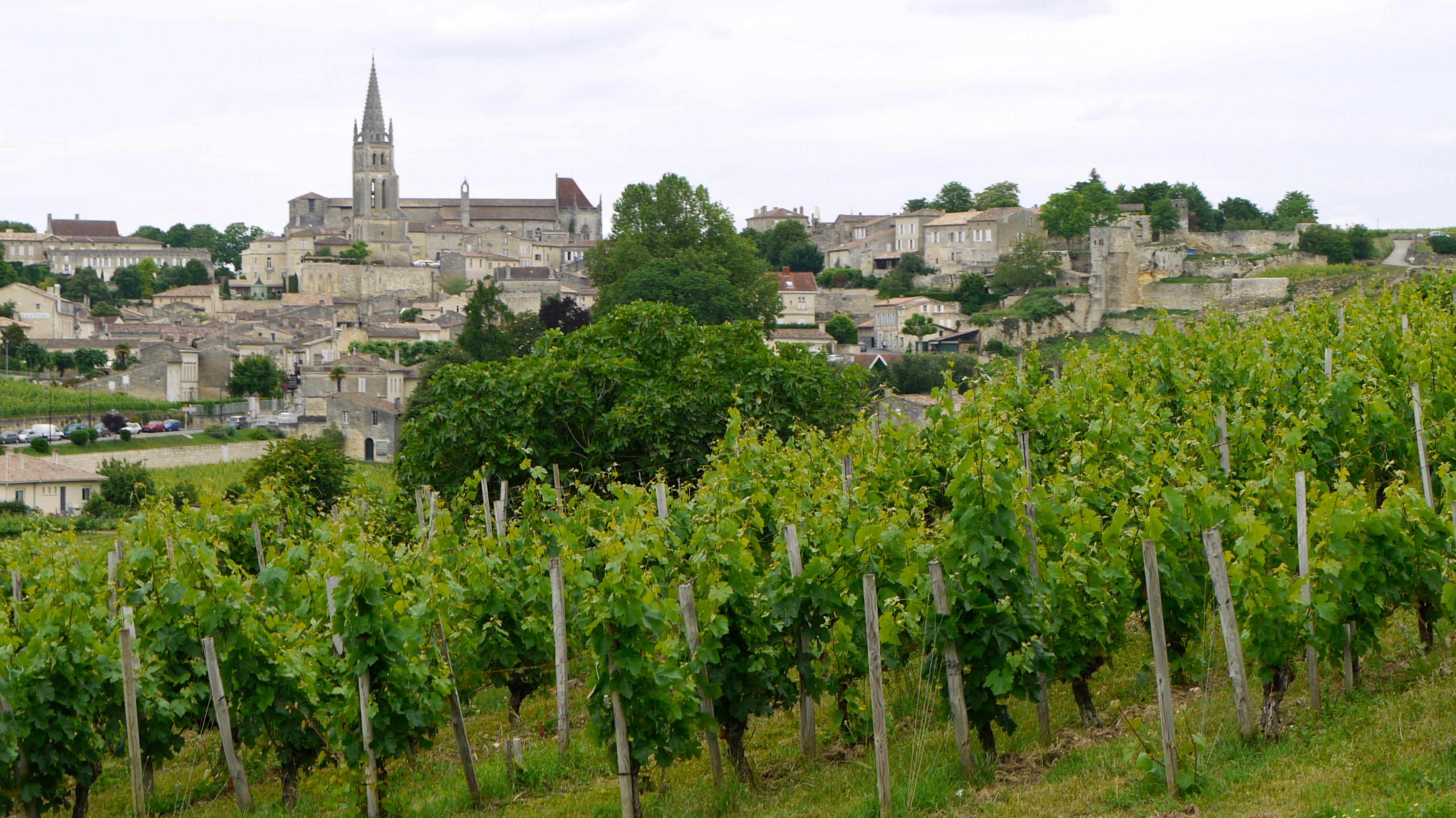 vùng rượu vang pháp Pau
