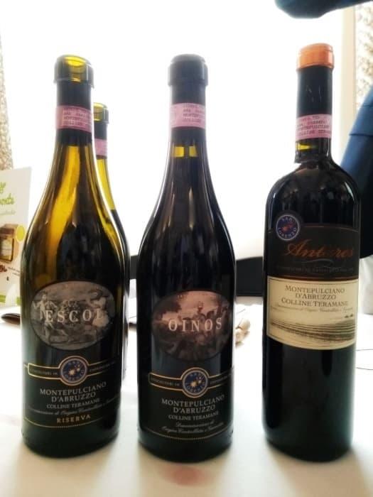 phân loại rượu vang ý vùng Abruzzo